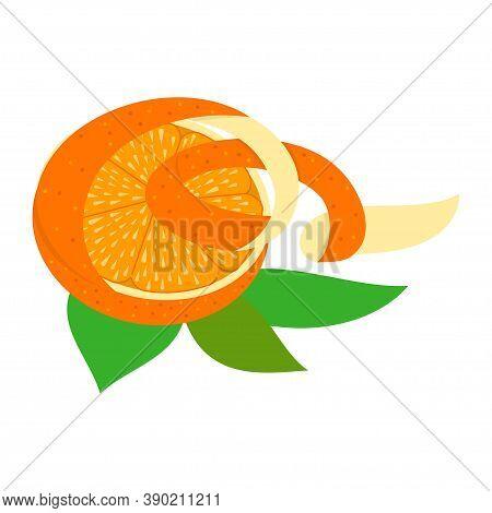Orange Halves Peel Illustration Design Template Isolated