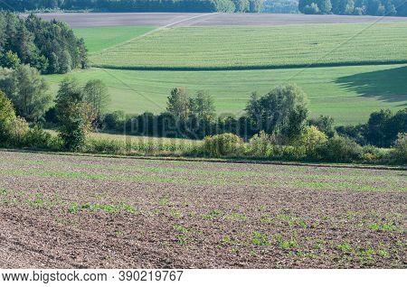 Rural Landscape In Swabian Alb In Germany In Morning Sunlight