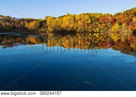 Marthaler Park Woodlands During Autumn And Reflections In Pond West Saint Paul Minnesota