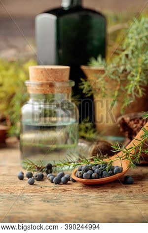 Juniper Tincture And Juniper Berries On An Old Wooden Table. In The Background Branches Of Juniper,