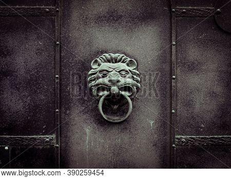Lion's Head Is Made Of Metal. Iron Door Handle In  Form Of  Predatory Animal With  Ring. Building En