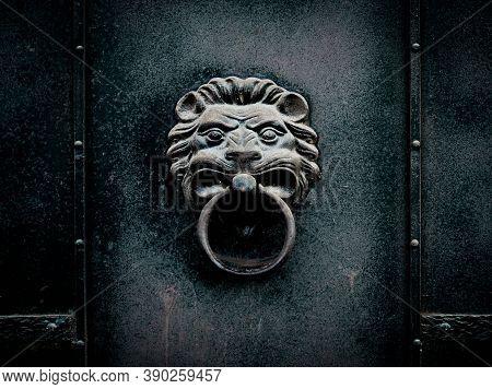 Metal Lion Head With Ring. Door Handle On An Old Iron Door In Shape Of Predatory Animal.