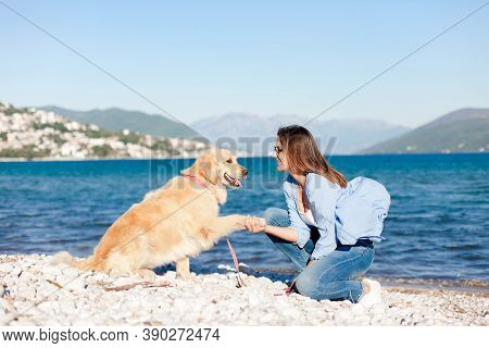 Dog Giving Paw To Happy Woman On Sea Beach. Labrador Retriever And Girl Playing Together On Coastlin