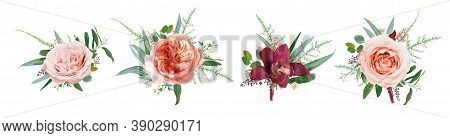 Vector Floral Bouquet Design: Pale Coral Juliette Rose Flower, Dusty Pink, Peach Roses, Burgundy Red