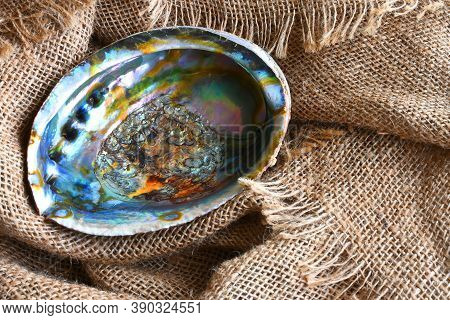 An Image Of An Abalone Shell On A Burlap Fabric Background.
