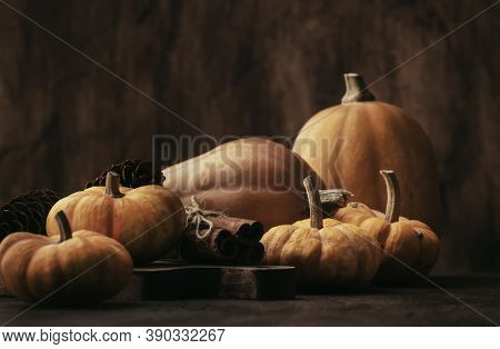 Thanksgiving Pumpkins Cinnamon And Pine Cones On Rustic Wooden Table Background - Autumn Thanksgivin