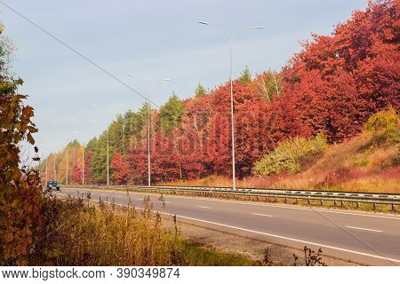 Straight Section Of The Motorway With Traffic Barriers, Lampposts And Forest On Side At Autumn, View