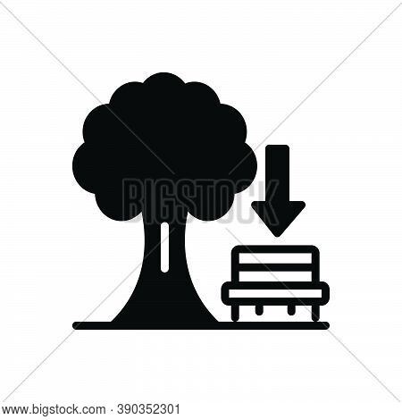 Black Solid Icon For Below Beneath  Under Underneath Environment Atmosphere Nature Trees Garden Benc