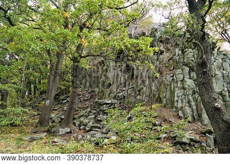 Rocks In The Deep Green Wood