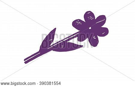 Hand Drawn Vector Illustration Of Herbs. Doodle Floral Element. Spring And Summer Symbol. Contour Ot