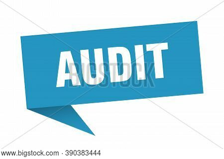 Audit Speech Bubble. Audit Sign. Blue Banner