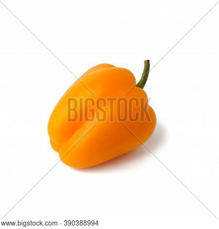 Bell Pepper (sweet, Capsicum, Paprika) Isolated On White Background. One Whole Fresh Vegetable With