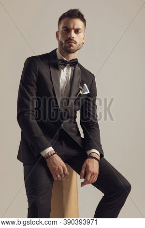 Suspicious groom looking forward and wearing tuxedo while sitting on gray studio background