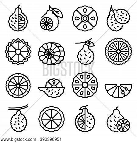 Bergamot Icons Set. Outline Set Of Bergamot Vector Icons For Web Design Isolated On White Background