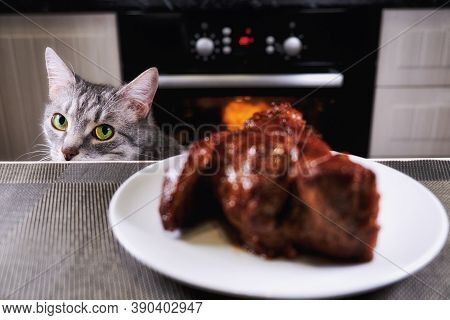 Cat Glances At Piece Meat. Pet Watch From Behind Kitchen Table. Grey Cat Looks At Background Of Kitc