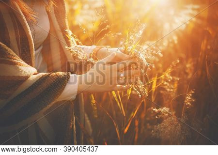 A Woman In A Brown Striped Shawl Gently Touches The Wild Grasses In The Field, Illuminated By Bright