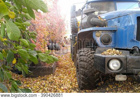 An Old Abandoned Car Overgrown With Vegetation Ural In The Chernobyl Zone