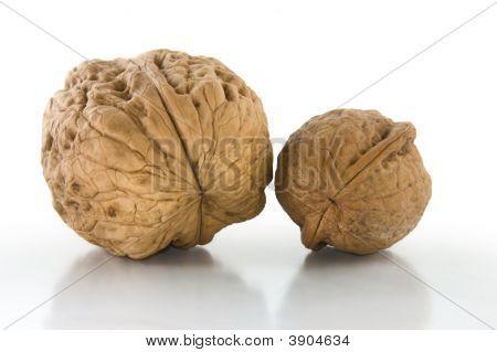 Couple Of Walnuts