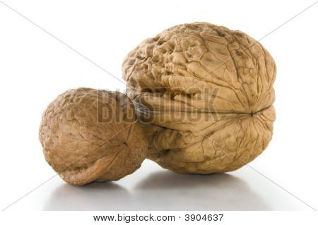 Couple Of Walnuts