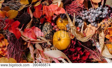Fall Arrangements With Berries, Nuts, Leaves, Corn And Pumpkins. Thanksgiving Still Life Decorations