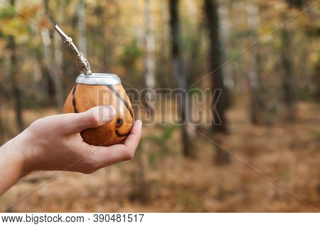 Male Hand Holds Traditional Drink Yerba Mate. Outdoors In The Autumn Forest. Close-up. Copy Space