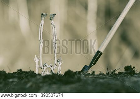 The Legs Of The Skeleton And The Shovel Are Stuck In The Ground. Skeleton Upside Down Stuck In The G