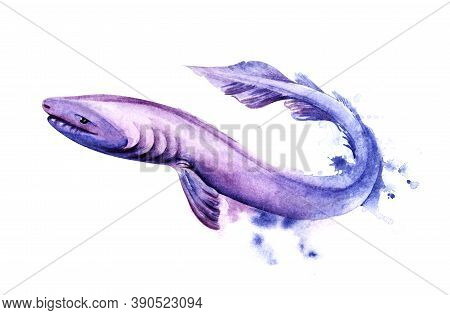 Watercolor Image Of Cartoon Frilled Shark Of Purple Color On White Background. Hand Drawn Illustrati