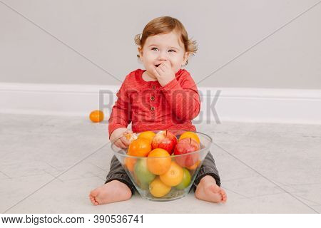 Cute Adorable Caucasian Baby Boy Eating Citrus Fruit. Finny Child Eating Healthy Organic Snack. Soli