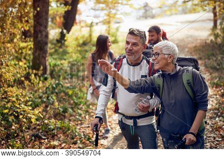 An elderly couple at hiking through the woods looking for the trail