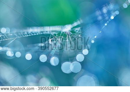 Abstract Blurred Blue Background With Bokeh. Blurred Cobwebs In The Dew. Abstract With Shiny Dew Dro