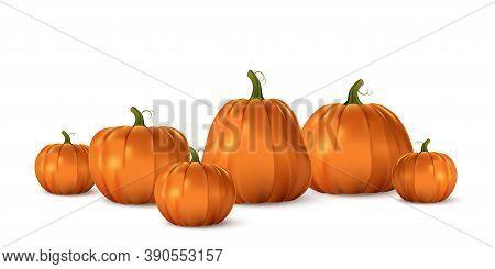 Halloween Orange Pumpkin Set. Isolated Traditional Realistic Food. October Holiday Decoration Vector