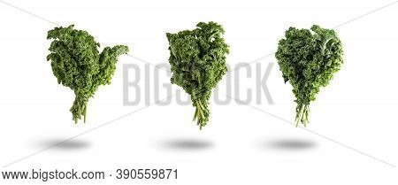 Three Bunches Of Kale Cabbage Isolated From The White Background