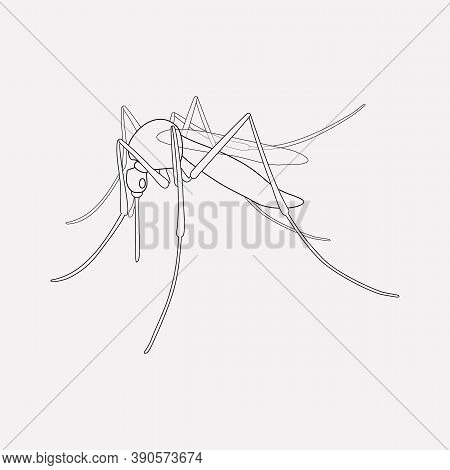 Mosquito Icon Line Element. Vector Illustration Of Mosquito Icon Line Isolated On Clean Background F