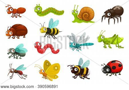 Cute Bugs And Insects Cartoon Characters. Happy Smiling Ant, Caterpillar And Snail, Spider, Beetle A