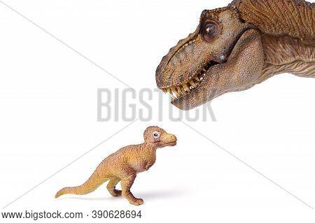 Tyrannosaurus Rex Dinosaurs With Little Tyrannosaurus Isolated On White Background. Closeup Dinosaur