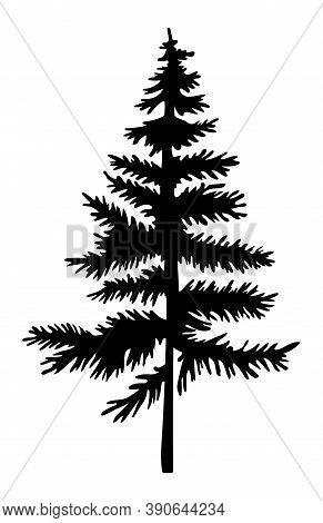 Black Silhouette Of Fir-tree. Christmas Tree. Simple Tree Icon. Nature Concept. Black Tree With Need