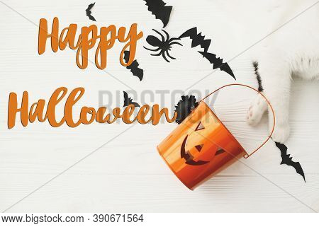 Happy Halloween Text On Cat Paw Holding Jack O Lantern Candy Pail On White Background With Bats And