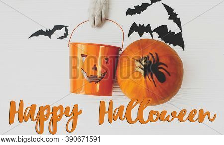 Happy Halloween Text On Puppy Holding Jack O Lantern Candy Pail On White Background With Pumpkin, Ba