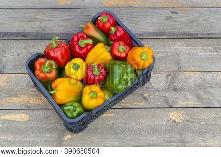 Fresh Colorful Bell Pepper Box On Wooden Table. Top View