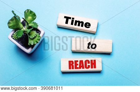 Time To Reach Is Written On Wooden Blocks On A Light Blue Background Near A Flower In A Pot