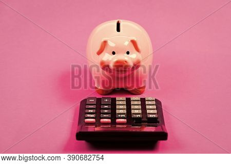 Piggy Bank Money Savings. Investing Gain Profit. Pay Taxes. Calculate Taxes. Piggy Bank Pig And Calc