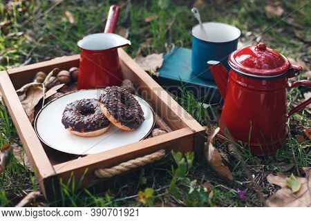 Picnic In The Forest. Tea And Donuts