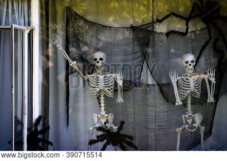 Skeletons Waving From The Window. Happy Skeletons. Halloween Scenery. Terrible Holiday At Home. Hall