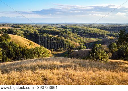 Green Valley Nature Landscape. Hills And Valley Landscape. Summer In Oak Forest Landscape. Forest An