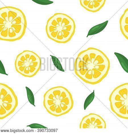 Yuzu Japanese Citron Fruit Seamless Pattern Vector Illustration Isolated On White Background. Full C