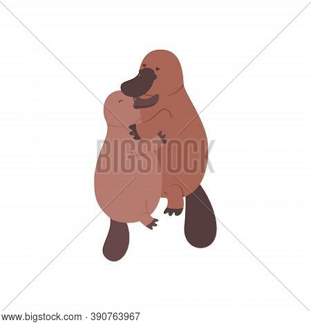 A Pair Of Platypuses In Love. Vector Flat Illustration Animal On White Background
