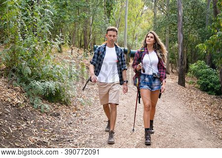 Caucasian Hikers Walking Or Trekking On Forest Path Surrounded With Mountain Trees. Pretty Woman And