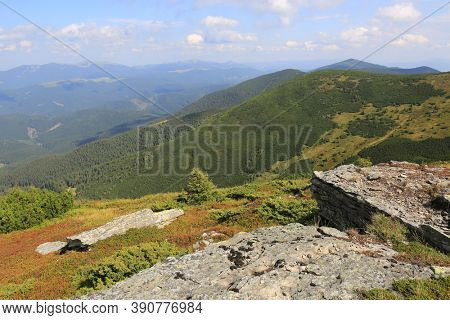Sunny view to green valley in Carpathian mountains, Ukraine