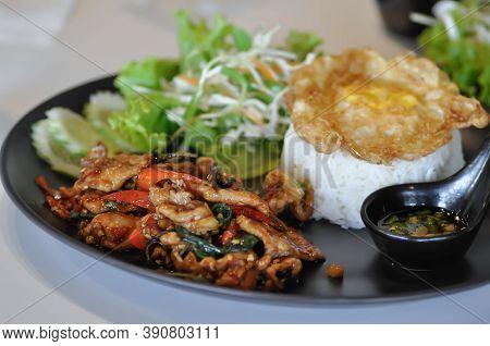 Stir Fried Pork With Holy Basil , Rice And Fried Egg Dish