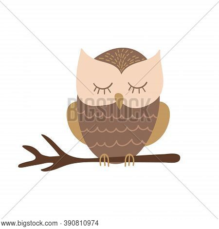 Cute Cartoon Owl Sitting On A Branch. Funny Woodland Character Isolated On White Background. Vector